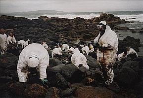 ボランティア - Wikipedia