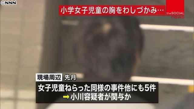 立憲民主党小川勝也参院議員の長男、保釈中に3度目逮捕 強制わいせつの疑いで