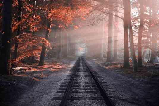 線路の画像を貼るトピ